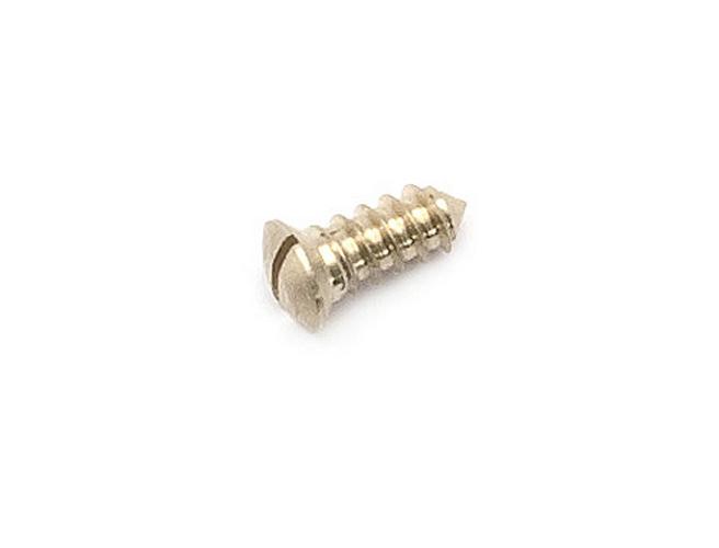 Screw - Post Locking Screw