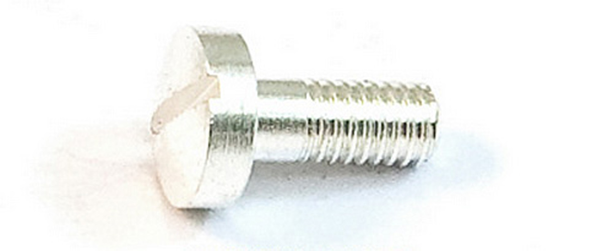 Trigger Boss Screw - Silver Plated