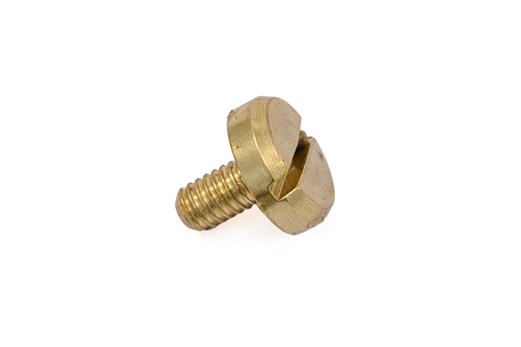 Rotor Bearing Screw