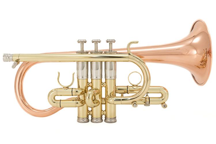 Getzen Custom 3892 - Soprano Cornet (G29291)