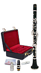 Buffet R13 Greenline - Bb Clarinet