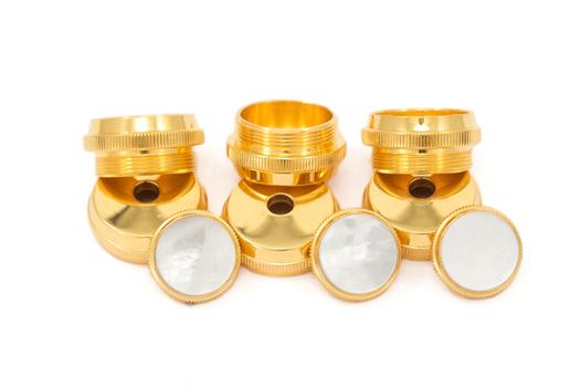 Getzen 24K Gold Plated Trim Kit - Eterna Trumpet